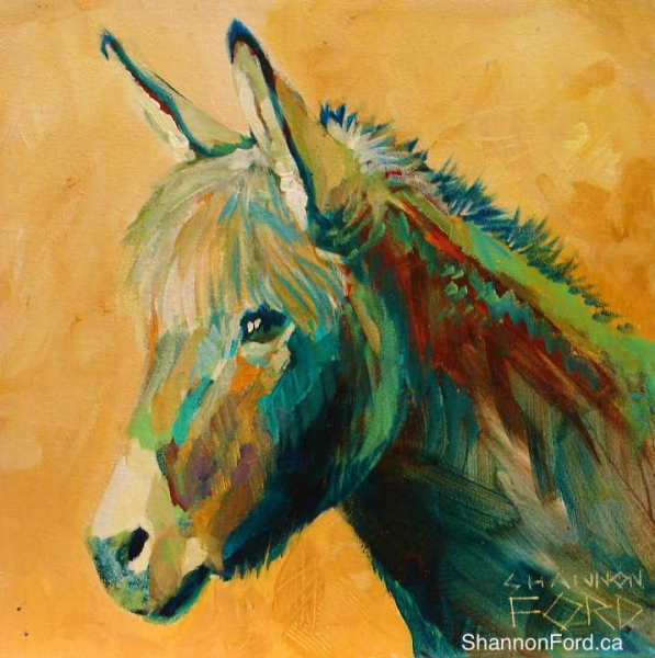 Shannon Ford, Sunny Day Donkey, 12 X 12