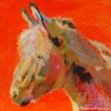 Shannon Ford,Donkey Time, 12 X 12
