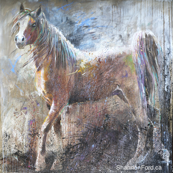 Shannon Ford, Stallion Magic, 79 X 79