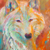 Shannon Ford, White Wolf Yearling, 24 X 20