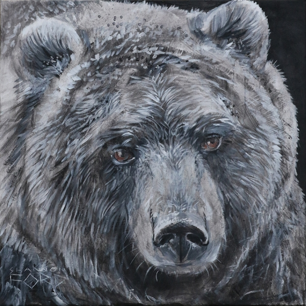Shannon Ford, Grizzly in Greys, 30 X 30 N, Acrylic on Canvas with Pipestoneand Diamond Dust CAEE01001SF s