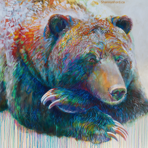 Shannon Ford, Grizzly in Pipestone 6, 60 X 60, Acrylic on Canvas